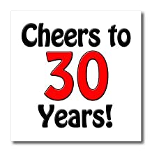 EvaDane - Funny Quotes - Cheers to 30 years. Red. - Iron on Heat Transfers - 6x6 Iron on Heat Transfer for White Material - ht_193577_2