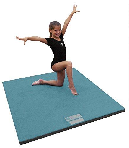Dollamur 10 X5 X2 Flexi Roll Carpeted Cheer Gymnastics Mat