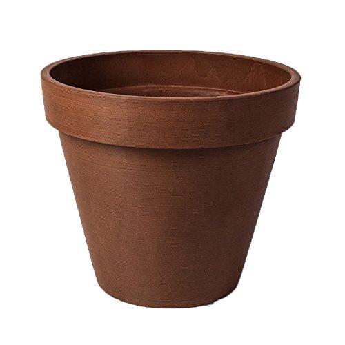 8inch terra cotta pot - 4