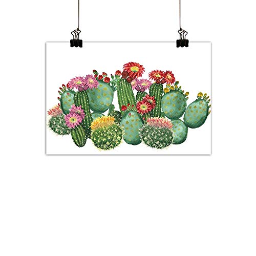 duommhome Cactus Decor Abstract PaintingSaguaro Barrel Hedge Hog Prickly Pear Opuntia Tropical Botany Garden Plants Natural artMulticolor 24