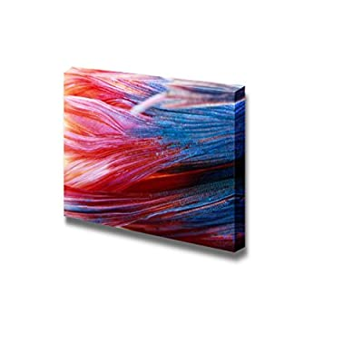 Canvas Prints Wall Art - Siamese Fighting Fish | Modern Wall Decor/Home Decoration Stretched Gallery Canvas Wrap Giclee Print & Ready to Hang - 24
