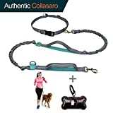 """Durable Hands Free Dog Leash for Running, Walking, Hiking, with Adjustable Waist Belt (Fits up to 47"""" Waist) and Shock Absorbing Bungee (CLA-Gray/Teal)"""