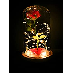 """Beauty and the Beast"" Everlasting Red Rose Flower Led Light with Fallen Petals in a Glass Dome on a Wooden Base 2"
