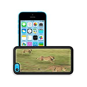 TYH - Africa Nature Animals Cheetahs Speed iPhone 5/5s Case Cover niuniu's case ending phone case