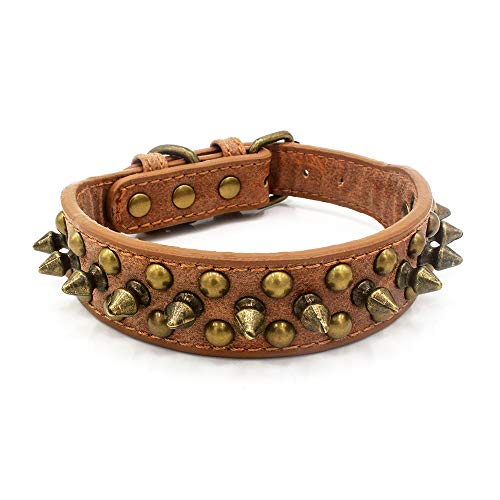 Retro Anti-bite Bronze Spiked Rivet Dog Collar Adjustable Pu Leather Three Colors Five Sizes for Puppy Small Medium and Big Dog (M, Brown)
