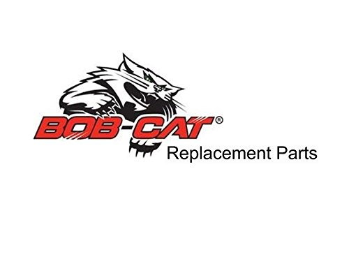 38111 BOBCAT//RANSOMES BELT Replacement