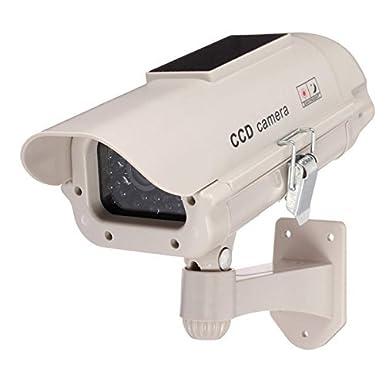 BW Cámara de vigilancia con energía solar diseño profesional IR luz LED de seguridad: Amazon.es: Iluminación