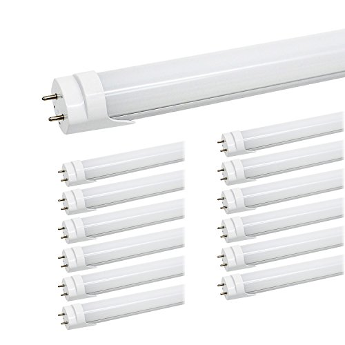 Fluorescent Light Bulb Vs Led