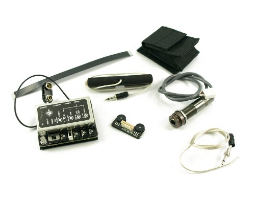 LR BAGGS® INTERNAL PREAMP/MIXER WITH ELEMENT AND IBEAM PICKUPS AND REMOTE CONTROL II — NYLON STRING ()