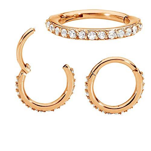 (365 Sleepers 1 Pair Stainless Steel 16G Hinged Gem Segment Ring Hoop Sleeper Huggie Earrings )