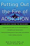 Putting Out the Fire of Addiction, Barry Sultanoff and Roger E. Klinger, 0658002813