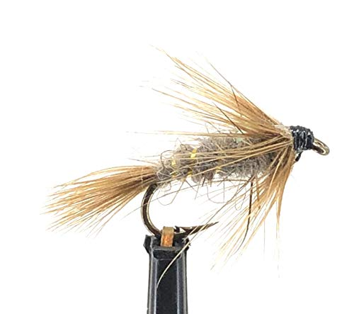 Feeder Creek Fly Fishing Flies - One Dozen - Flashback Calibaetis Nymph Fly for Trout and Other Freshwater Fish (12, Tan) (Best Steelhead Fly Patterns)