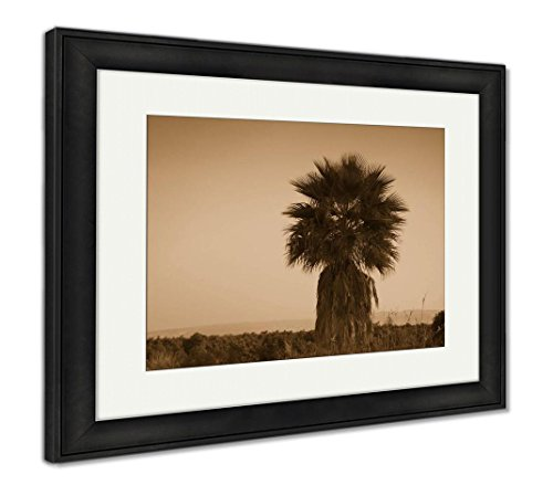 (Ashley Framed Prints Lonely Palm in Desert at Sunset, Wall Art Home Decoration, Sepia, 30x35 (Frame Size), Black Frame, AG6498211)