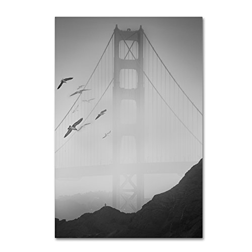 picture of Trademark Fine Art Golden Gate Pier and Birds I by Moises Levy, 22x32-Inch
