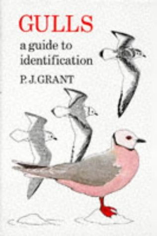 Gulls, Second Edition: A Guide to Identification (T & AD Poyser)