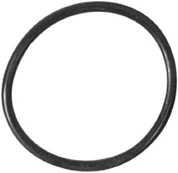 Amazon.com : Summer Escapes 1-1/2 inch Hose O-Ring : Swimming Pool ...