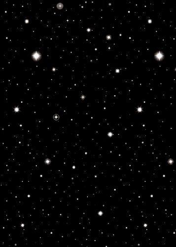 Star Backdrop - 5