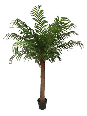 Blooming Artificial - Large Artificial Robellini Palm, Coconut Style Tropical Palm Tree, High Quality Palm, Realistic Trunk - Exotic Palm Fronds, 3 Sizes Available