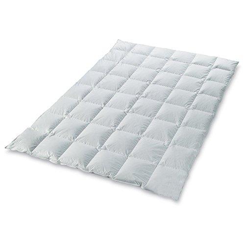 leichte ganzjahres daunendecke light w rmeklasse 2 100 daunen sommer daunendecke bettdecke. Black Bedroom Furniture Sets. Home Design Ideas