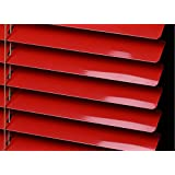 "PASSENGER PIGEON Horizontal Window Blinds, Superior Blackout Light Filter Aluminum Blinds Custom-Made Water Rust Proof Fire Resistant Mini Blinds, 1 Inch Slats, 22"" W x 48"" L,Red Blind"