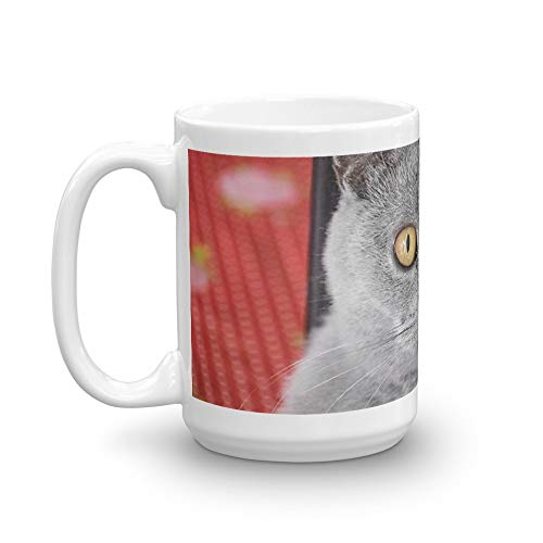 Tyna Ho British Shorthair Cat Gift For Coffee Lover 15 Oz