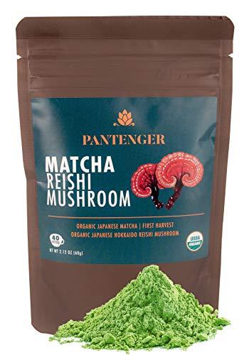 Matcha Mushroom Green Tea