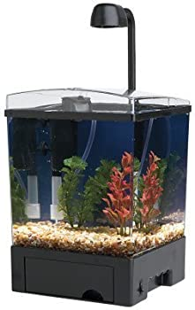 Tetra LED Aquarium Kit 1.5 Gallon Cube