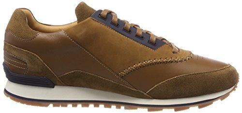 brun ltdc Moyen Brun Herren Patron Chaussure Zephir runn 210 xtC0ACwqY