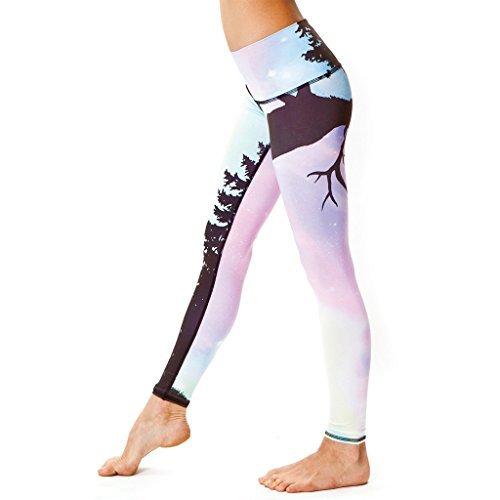 Teeki Northern Lights Hot Pant Yoga Leggings (Medium)