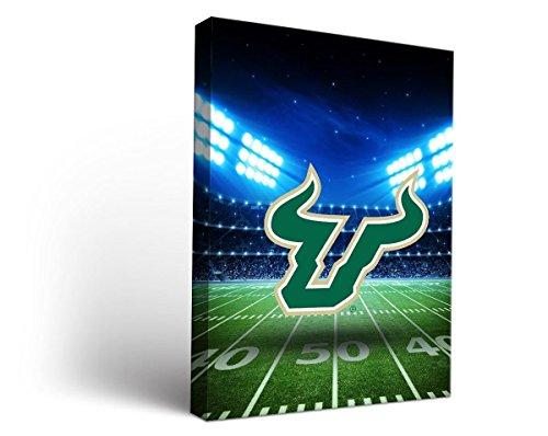 Victory Tailgate South Florida USF Bulls Canvas Wall Art Stadium Design (18x24)