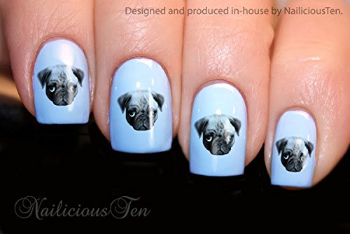 Amazon.com: NAILICIOUS TEN Pug Dog Design Nail Art Wraps Water Transfers  21pcs Decals ST8124: Beauty - Amazon.com: NAILICIOUS TEN Pug Dog Design Nail Art Wraps Water