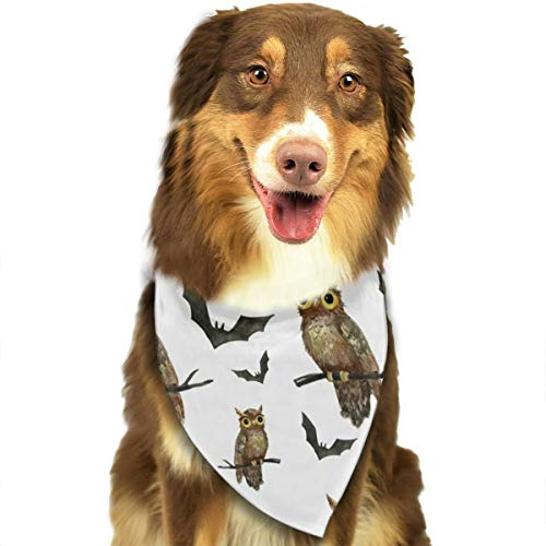 - TNIJWMG Hand Painted Halloween Owls and Bats Pattern Bandana Triangle Bibs Scarfs Accessories for Pet Cats and Puppies