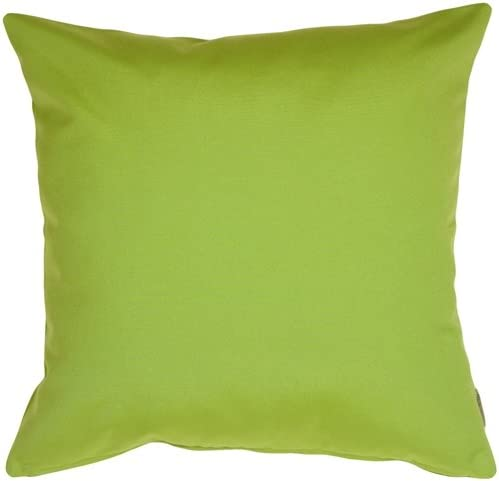PILLOW D COR Sunbrella Macaw Green 20×20 Outdoor Pillow