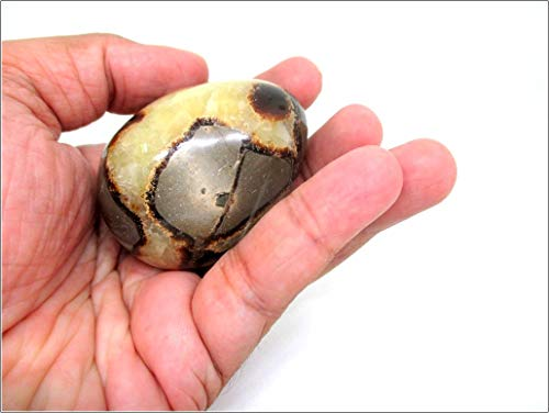 Jet Septarian Gemstone Egg 45-50 mm A+ Hand Carved Crystal Altar Healing Devotional Focus Spiritual Chakra Cleansing Metaphysical Jet International Crystal Therapy Image is JUST A Reference