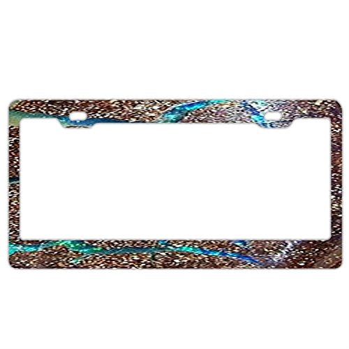 Queensland Boulder Opal Solid License Plate Frame, Car Licenses Plate Covers For Both Front And Back License Tag Stainless Steel Metal License Plate Frame Humor (Queensland Boulder)
