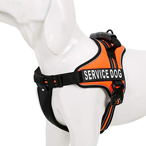 Chai's Choice Service Dog Vest Harness Best Truelove Model with 2 Reflective Service Dog Patches and Sturdy Handle. Matching Padded 3M Reflective Leash Available (X-Small, Orange) by Chai's Choice