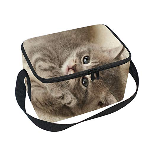 Adult Lunch Box Insulated Lunch Bag Kitten Large Cooler for sale  Delivered anywhere in USA