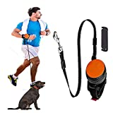 Hands Free Dog Leash, 3M Auto Retractable Dog Leash for Small/Medium Dogs Explosion-Proof