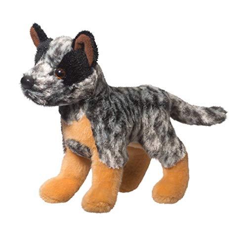 Douglas Clanger Australian Cattledog 8