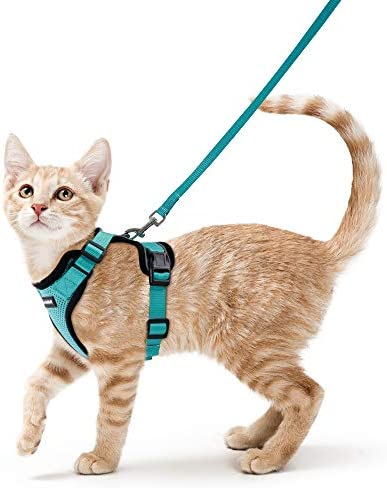 rabbitgoo Cat Harness and Leash for Walking, Escape Proof Soft Adjustable Vest Harnesses for Cats, Easy Control Breathable Reflective Strips Jacket 23