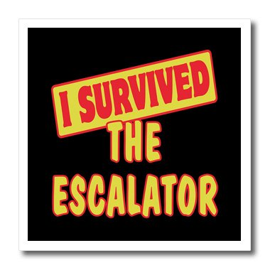 (3dRose ht_118331_3 I Survived The Escalator Survial Pride and Humor Design-Iron On Heat Transfer, 10 by 10