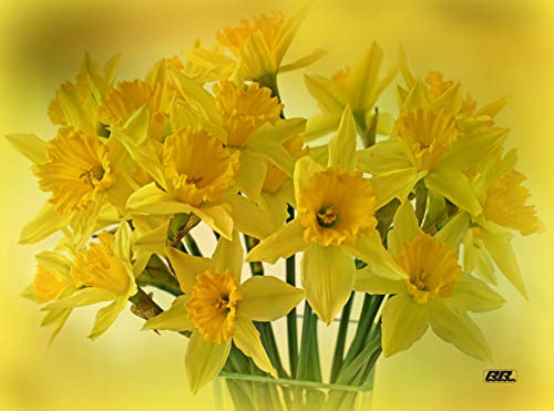 Flower Yellow Daffodil Floral Kitchen Glass Cutting Board Decorative Gift For Mom Daffodil Bouquet -