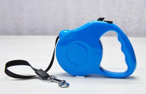 Generic yanhonguk150730–8571yh2787yh können Hundeleine Training Tape Leine Retr 5m blau 5m blau D Pet ausziehbare Leine NG Tape P Hunde Sicherheit Sicherheit T einziehbare Hundeleine