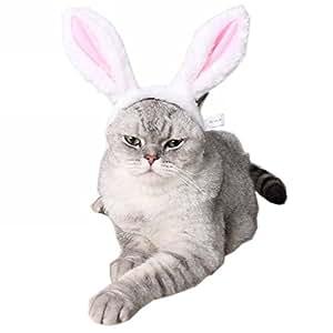 Amazon.com : ZTL Cute Rabbit Bunny Ears Headband for Dog