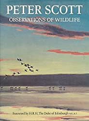 Observations of Wildlife
