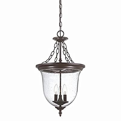 Acclaim 9316ABZ Belle Collection 3-Light Outdoor Light Fixture Hanging Lantern, Architectural Bronze