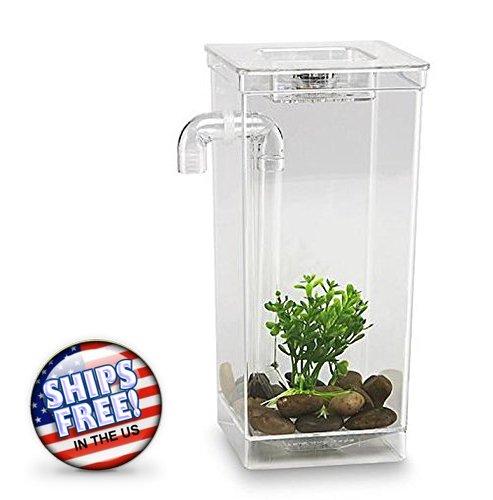 Mount Fiberglass Fish (NEW Self Cleaning Fish Tank Kids Small Aquarium Pet Bowl Desktop Decoration)