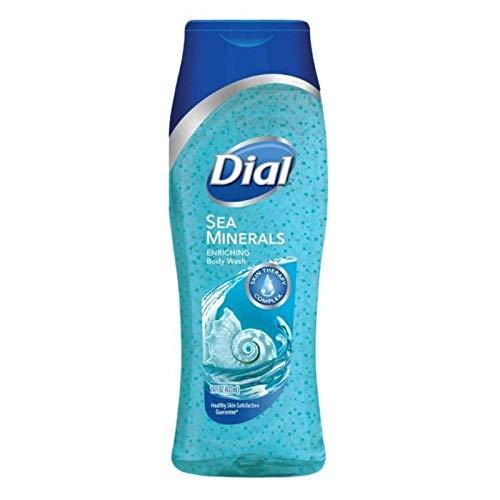 Dial Skin Therapy Enriching Body Wash, Himalayan Salt & Exfoliating Beads 16 oz (Pack of 2)