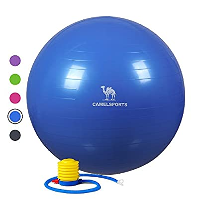 Camel Thick Exercise Ball with Quick Pump (55/65cm) for Yoga Fitness Stability & Balance - Anti-Burst & Non-Slip