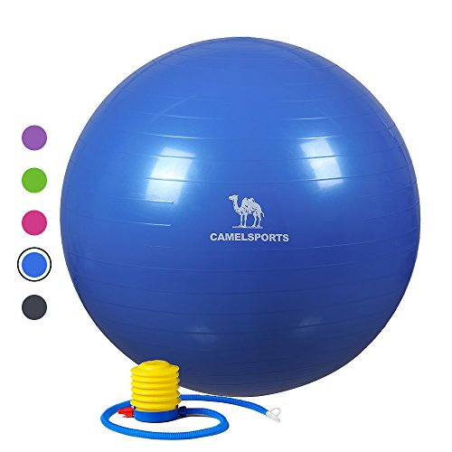 Camel Thick Exercise Ball with Pump (55/65/75cm) for Yoga Fitness Stability & Balance - Anti-Burst & Non-Slip